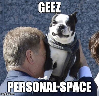 Not sure what is going on here. | GEEZ PERSONAL SPACE | image tagged in dog week | made w/ Imgflip meme maker