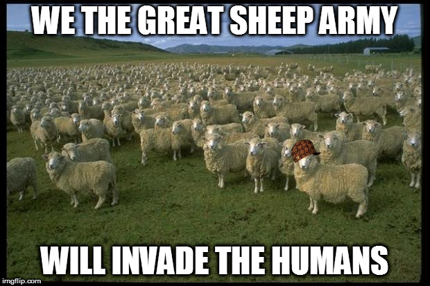 Obama Sheep | WE THE GREAT SHEEP ARMY WILL INVADE THE HUMANS | image tagged in obama sheep,scumbag | made w/ Imgflip meme maker