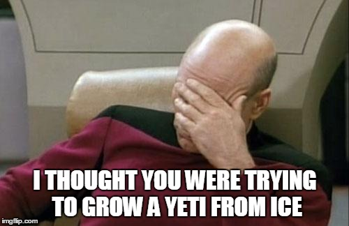 Captain Picard Facepalm Meme | I THOUGHT YOU WERE TRYING TO GROW A YETI FROM ICE | image tagged in memes,captain picard facepalm | made w/ Imgflip meme maker