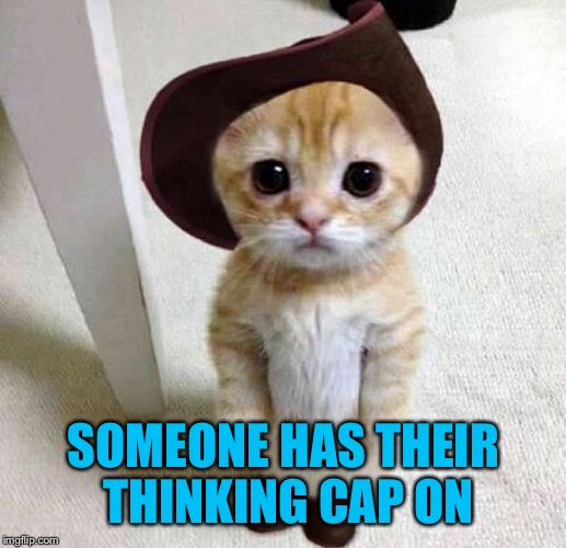 SOMEONE HAS THEIR THINKING CAP ON | made w/ Imgflip meme maker