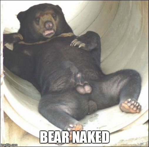 BEAR NAKED | made w/ Imgflip meme maker