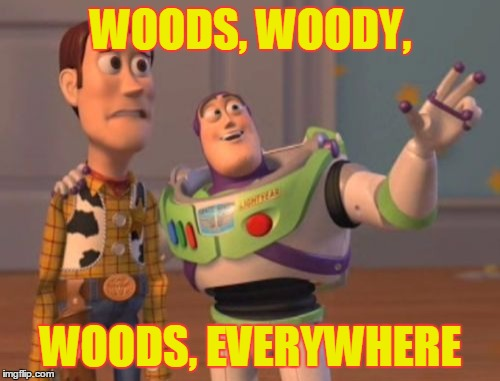 X, X Everywhere Meme | WOODS, WOODY, WOODS, EVERYWHERE | image tagged in memes,x,x everywhere,x x everywhere | made w/ Imgflip meme maker