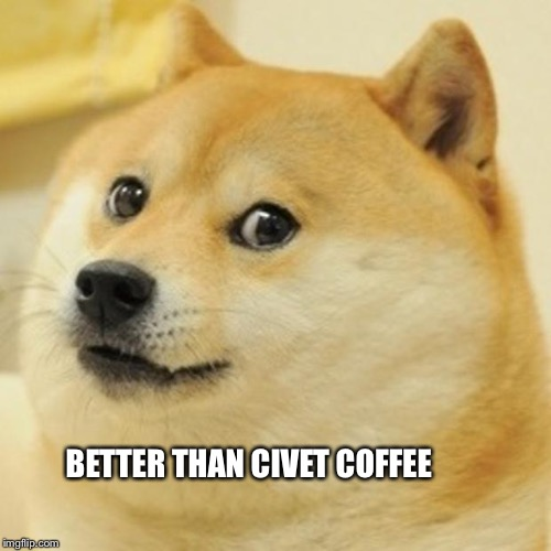 Doge Meme | BETTER THAN CIVET COFFEE | image tagged in memes,doge | made w/ Imgflip meme maker
