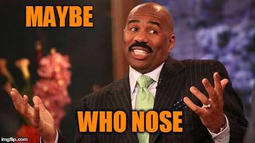 Steve Harvey Meme | MAYBE WHO NOSE | image tagged in memes,steve harvey | made w/ Imgflip meme maker