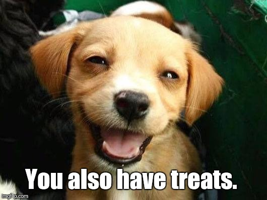 Dog Smiling | You also have treats. | image tagged in dog smiling | made w/ Imgflip meme maker