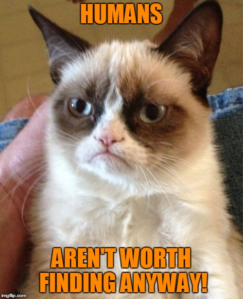 Grumpy Cat Meme | HUMANS AREN'T WORTH FINDING ANYWAY! | image tagged in memes,grumpy cat | made w/ Imgflip meme maker