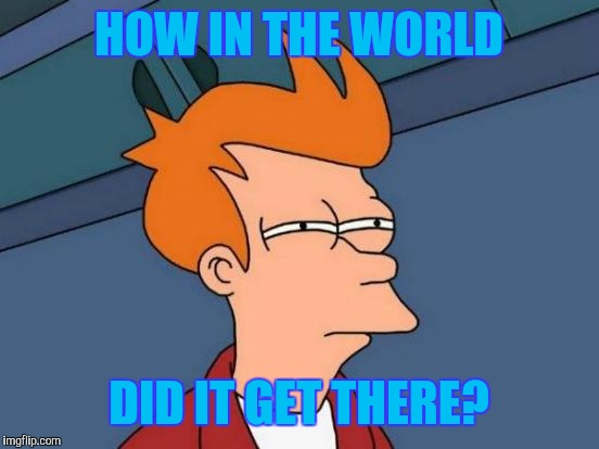 HOW IN THE WORLD DID IT GET THERE? | image tagged in memes,futurama fry | made w/ Imgflip meme maker