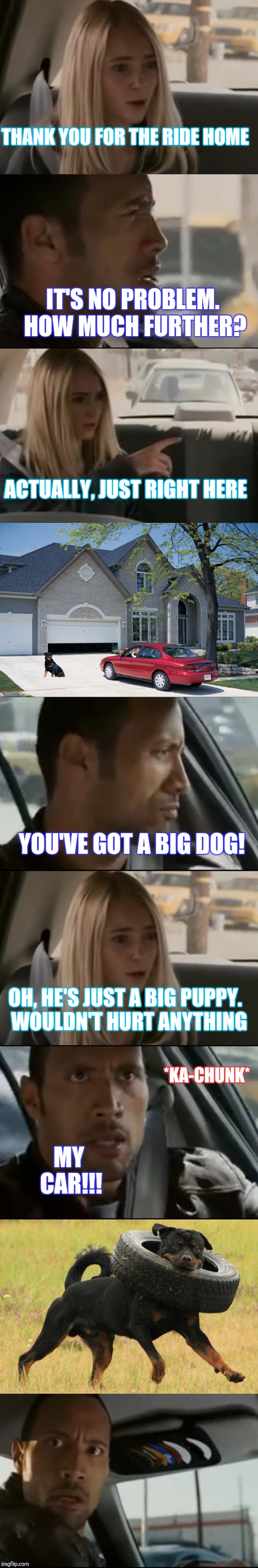 "THEY'RE ALWAYS "" JUST A PUPPY"" 
