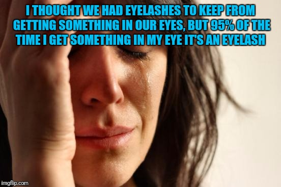 First World Problems Meme | I THOUGHT WE HAD EYELASHES TO KEEP FROM GETTING SOMETHING IN OUR EYES, BUT 95% OF THE TIME I GET SOMETHING IN MY EYE IT'S AN EYELASH | image tagged in memes,first world problems | made w/ Imgflip meme maker