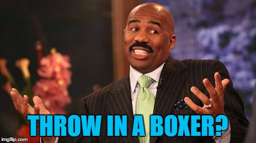 Steve Harvey Meme | THROW IN A BOXER? | image tagged in memes,steve harvey | made w/ Imgflip meme maker