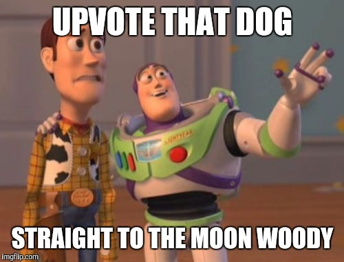 X, X Everywhere Meme | UPVOTE THAT DOG STRAIGHT TO THE MOON WOODY | image tagged in memes,x x everywhere | made w/ Imgflip meme maker