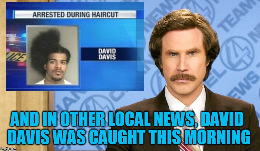 and now for your local news | AND IN OTHER LOCAL NEWS, DAVID DAVIS WAS CAUGHT THIS MORNING | image tagged in ron burgundy,breaking news,anchorman news update | made w/ Imgflip meme maker