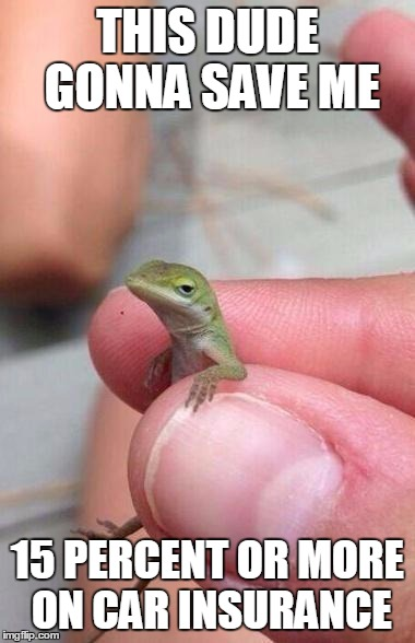 1n05iy ghetto gecko memes imgflip