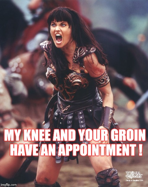 Xena is pissed | MY KNEE AND YOUR GROIN HAVE AN APPOINTMENT ! | image tagged in xena is pissed | made w/ Imgflip meme maker