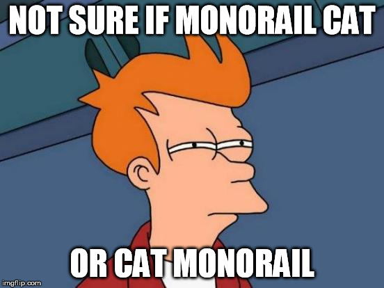 Futurama Fry Meme | NOT SURE IF MONORAIL CAT OR CAT MONORAIL | image tagged in memes,futurama fry | made w/ Imgflip meme maker