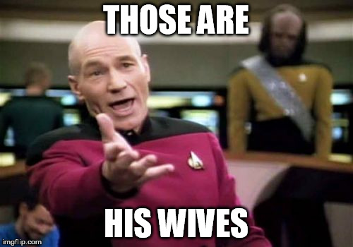 Picard Wtf Meme | THOSE ARE HIS WIVES | image tagged in memes,picard wtf | made w/ Imgflip meme maker