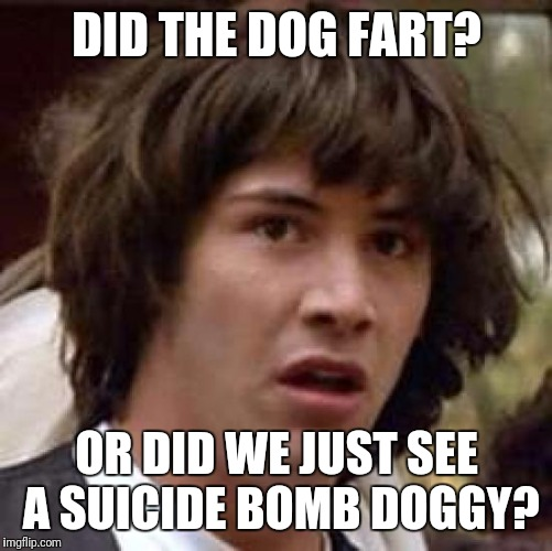 Conspiracy Keanu Meme | DID THE DOG FART? OR DID WE JUST SEE A SUICIDE BOMB DOGGY? | image tagged in memes,conspiracy keanu | made w/ Imgflip meme maker