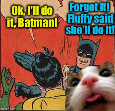 Batman Slapping Robin Meme | Ok, I'll do it, Batman! Forget it! Fluffy said she'll do it! | image tagged in memes,batman slapping robin | made w/ Imgflip meme maker