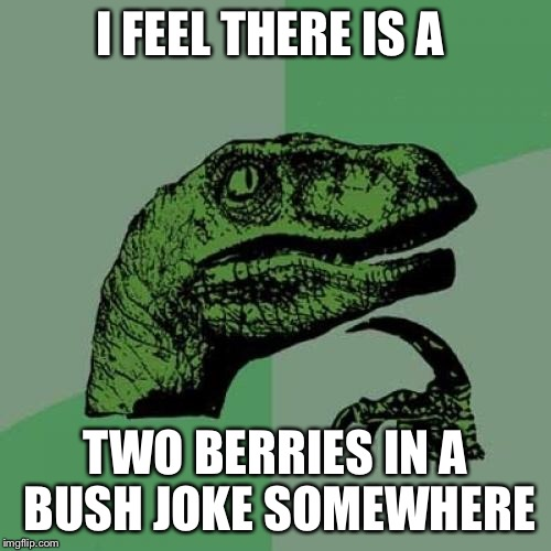 Philosoraptor Meme | I FEEL THERE IS A TWO BERRIES IN A BUSH JOKE SOMEWHERE | image tagged in memes,philosoraptor | made w/ Imgflip meme maker