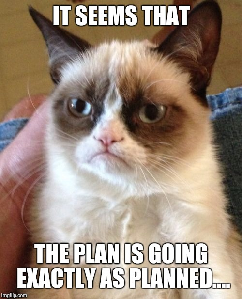 Grumpy Cat Meme | IT SEEMS THAT THE PLAN IS GOING EXACTLY AS PLANNED.... | image tagged in memes,grumpy cat | made w/ Imgflip meme maker