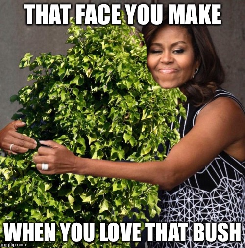 THAT FACE YOU MAKE WHEN YOU LOVE THAT BUSH | made w/ Imgflip meme maker