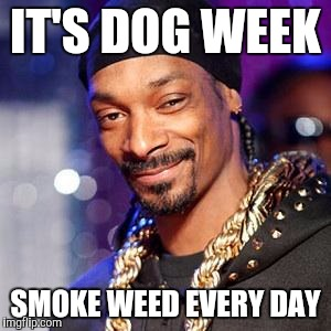 Um snoop wrong type of dog | IT'S DOG WEEK SMOKE WEED EVERY DAY | image tagged in snoop dogg,dog week,smoke weed everyday,funny,memes | made w/ Imgflip meme maker