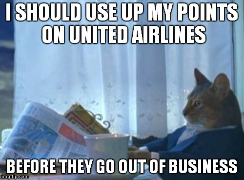Is this United Airlines week on IMGFLIP? |  I SHOULD USE UP MY POINTS ON UNITED AIRLINES; BEFORE THEY GO OUT OF BUSINESS | image tagged in memes,i should buy a boat cat,united airlines | made w/ Imgflip meme maker