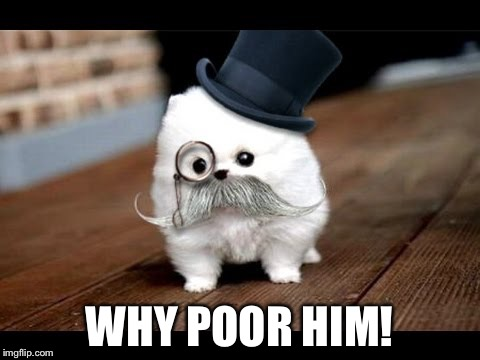 If You Ask Me (Dog) | WHY POOR HIM! | image tagged in if you ask me dog | made w/ Imgflip meme maker