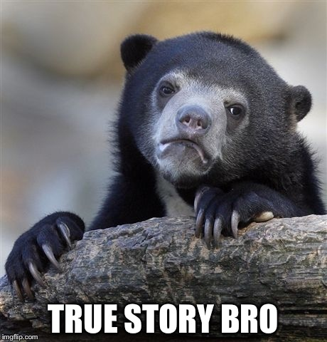 Confession Bear Meme | TRUE STORY BRO | image tagged in memes,confession bear | made w/ Imgflip meme maker