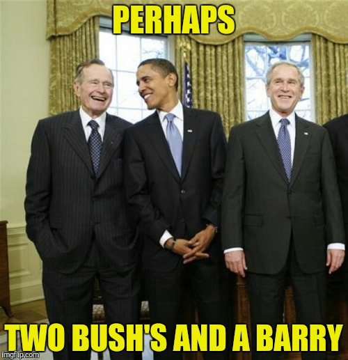 PERHAPS TWO BUSH'S AND A BARRY | made w/ Imgflip meme maker