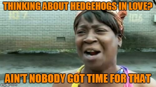 Aint Nobody Got Time For That Meme | THINKING ABOUT HEDGEHOGS IN LOVE? AIN'T NOBODY GOT TIME FOR THAT | image tagged in memes,aint nobody got time for that | made w/ Imgflip meme maker