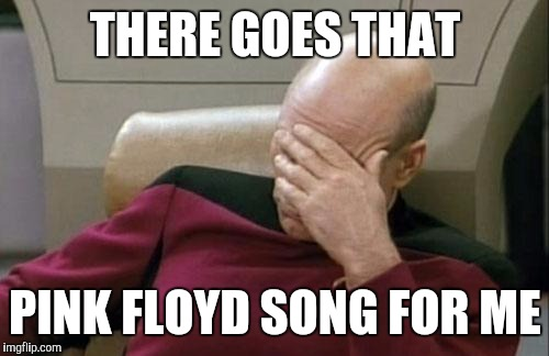 Captain Picard Facepalm Meme | THERE GOES THAT PINK FLOYD SONG FOR ME | image tagged in memes,captain picard facepalm | made w/ Imgflip meme maker
