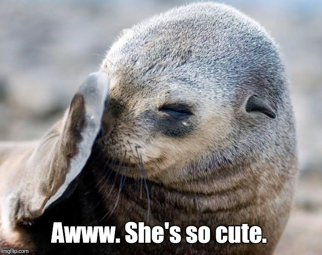 633141...93a.jpg | Awww. She's so cute. | image tagged in 63314193ajpg | made w/ Imgflip meme maker