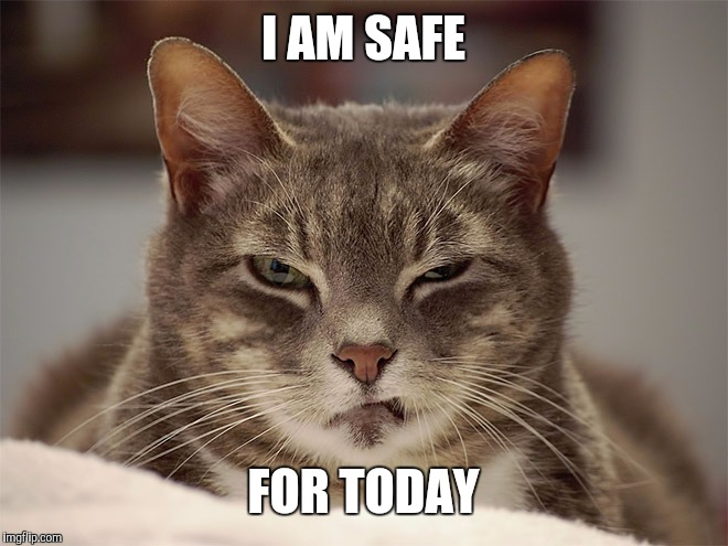 Sarcasm Cat | I AM SAFE FOR TODAY | image tagged in sarcasm cat | made w/ Imgflip meme maker