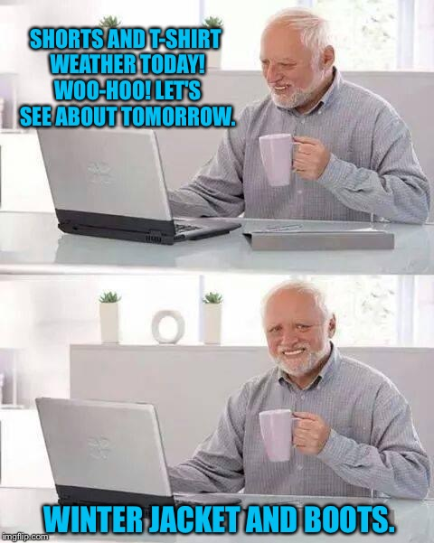 Hide the Pain Harold Meme | SHORTS AND T-SHIRT WEATHER TODAY! WOO-HOO! LET'S SEE ABOUT TOMORROW. WINTER JACKET AND BOOTS. | image tagged in memes,hide the pain harold | made w/ Imgflip meme maker