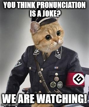 Grammar Nazi Cat | YOU THINK PRONUNCIATION IS A JOKE? WE ARE WATCHING! | image tagged in grammar nazi cat | made w/ Imgflip meme maker