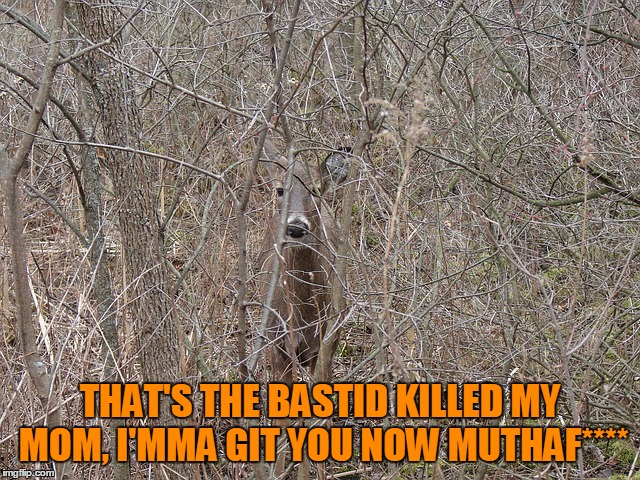 THAT'S THE BASTID KILLED MY MOM, I'MMA GIT YOU NOW MUTHAF**** | made w/ Imgflip meme maker