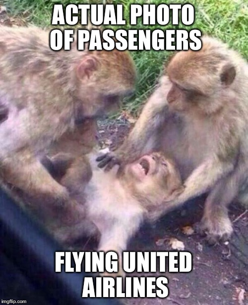 United airlines  | ACTUAL PHOTO OF PASSENGERS FLYING UNITED AIRLINES | image tagged in funny memes,topical,political meme,make america great again | made w/ Imgflip meme maker