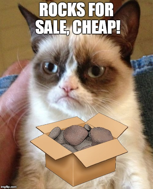 Grumpy Cat Meme | ROCKS FOR SALE, CHEAP! | image tagged in memes,grumpy cat | made w/ Imgflip meme maker