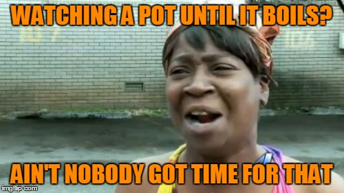Aint Nobody Got Time For That Meme | WATCHING A POT UNTIL IT BOILS? AIN'T NOBODY GOT TIME FOR THAT | image tagged in memes,aint nobody got time for that | made w/ Imgflip meme maker