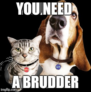 YOU NEED A BRUDDER | made w/ Imgflip meme maker