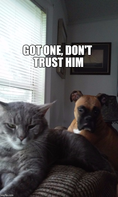 GOT ONE, DON'T TRUST HIM | made w/ Imgflip meme maker