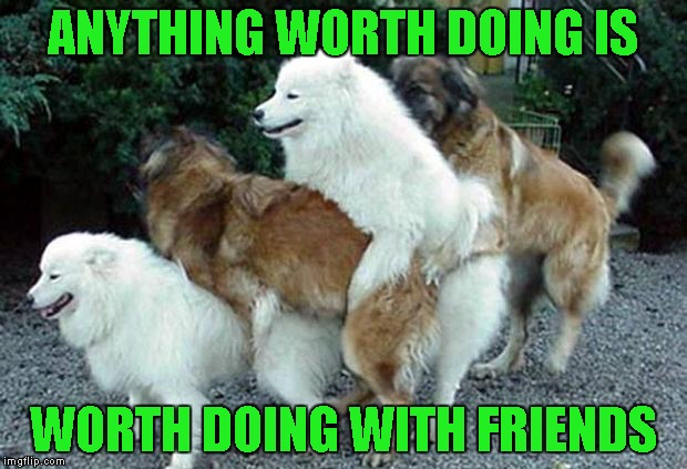 Fun Dog Meme : Everything is more fun when done with good friends!!! dog week a