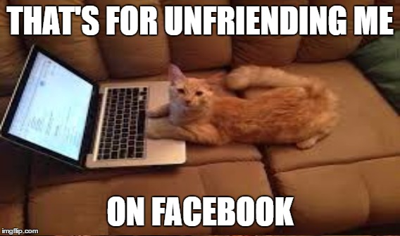 THAT'S FOR UNFRIENDING ME ON FACEBOOK | made w/ Imgflip meme maker