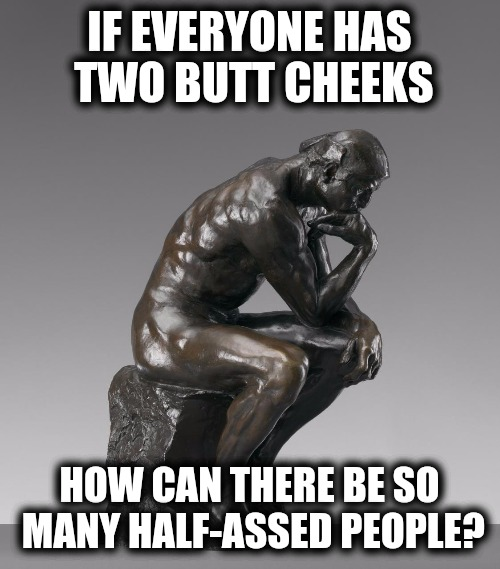 Are you pondering what I'm pondering? | IF EVERYONE HAS TWO BUTT CHEEKS HOW CAN THERE BE SO MANY HALF-ASSED PEOPLE? | image tagged in the thinker,asses | made w/ Imgflip meme maker