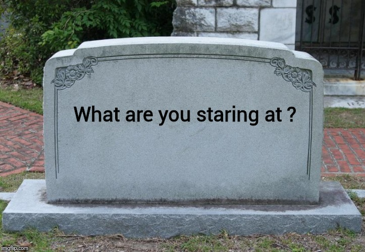 Take a picture it'll last longer | What are you staring at ? | image tagged in blank tombstone,dead | made w/ Imgflip meme maker
