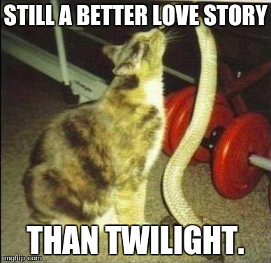 STILL A BETTER LOVE STORY THAN TWILIGHT. | image tagged in catsnake | made w/ Imgflip meme maker