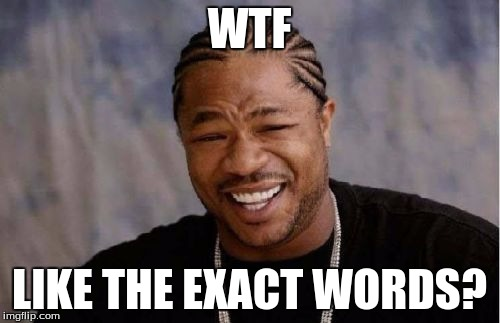 Yo Dawg Heard You Meme | WTF LIKE THE EXACT WORDS? | image tagged in memes,yo dawg heard you | made w/ Imgflip meme maker