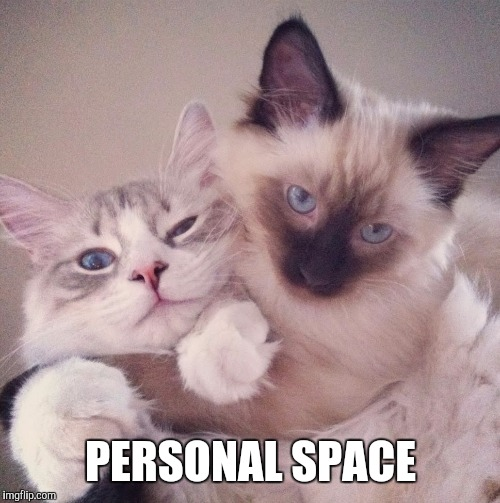 PERSONAL SPACE | made w/ Imgflip meme maker
