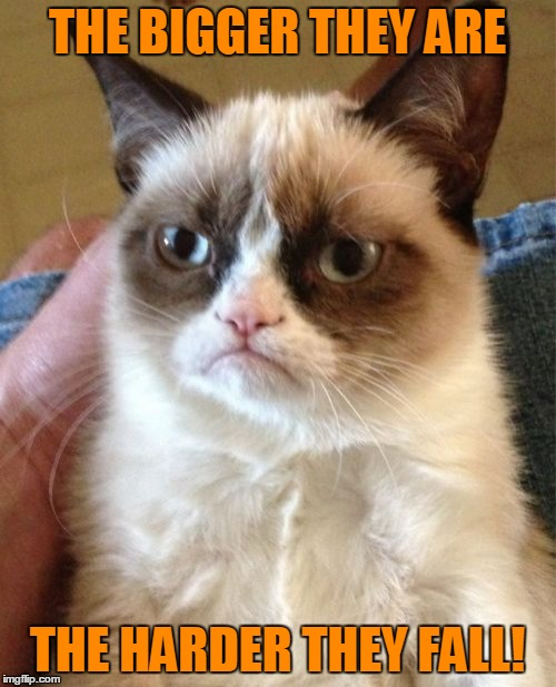 Grumpy Cat Meme | THE BIGGER THEY ARE THE HARDER THEY FALL! | image tagged in memes,grumpy cat | made w/ Imgflip meme maker
